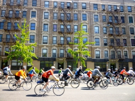 bicycle-new-york-vehicle-tourism-cycling-race-sports-cyclists-tours-road-cycling-cycle-sport-endurance-sports-racing-bicycle-road-bicycle-racing-717325_edited
