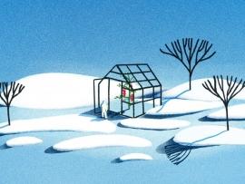Gas serra: quali sono e come sono emessi