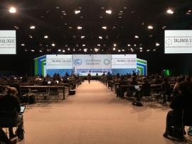 Conferenze Clima (COP)