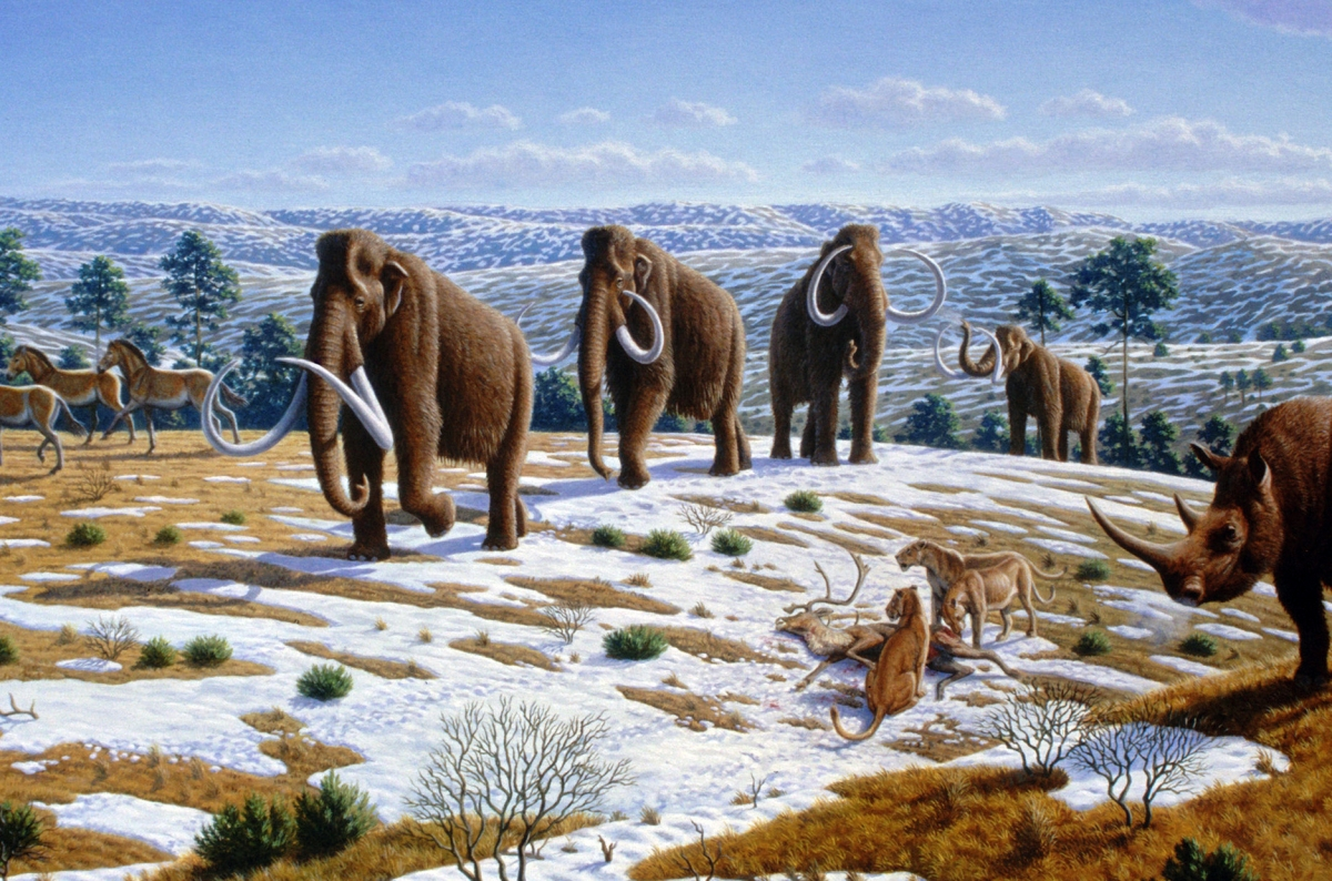 Ice_age_fauna_of_northern_Spain_-_Mauricio_Antón-2