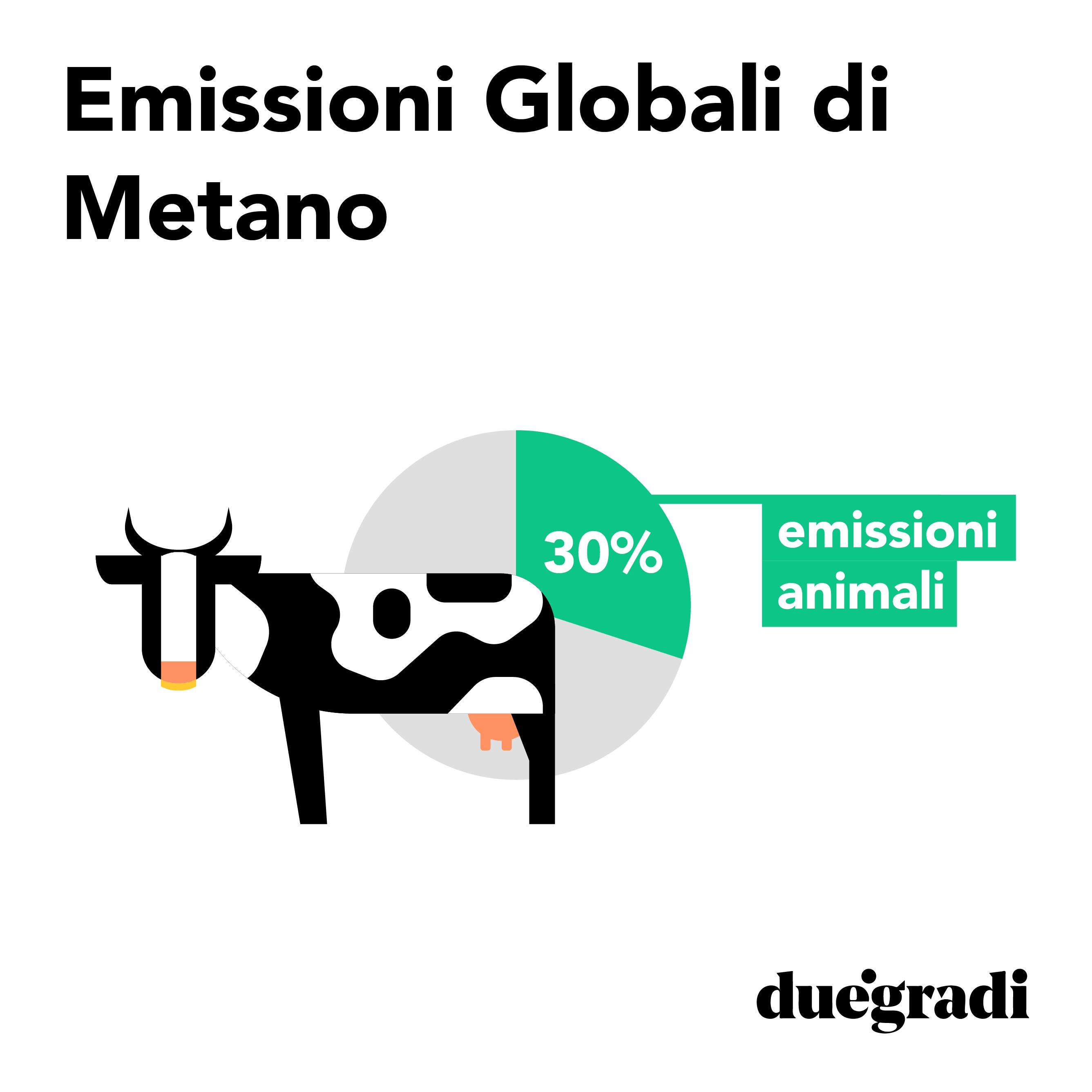 Impatto ambientale della carne: emissioni da flatulenze