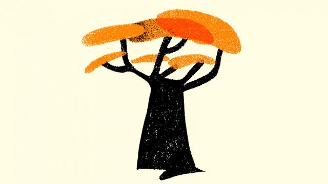 carbon-footprint-albero