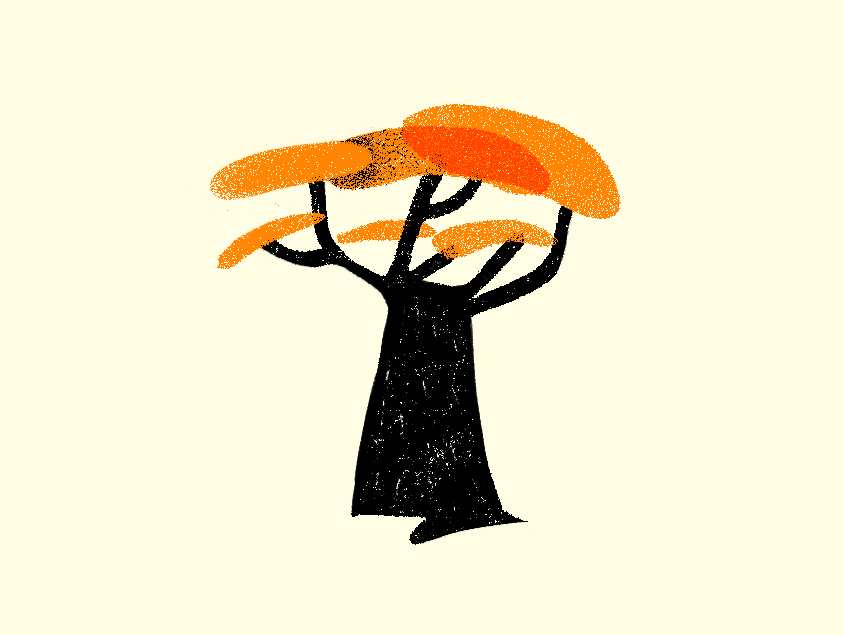 carbon-footprint-albero